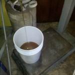 Filling my 5 Gallon bucket with orange Blossom honey